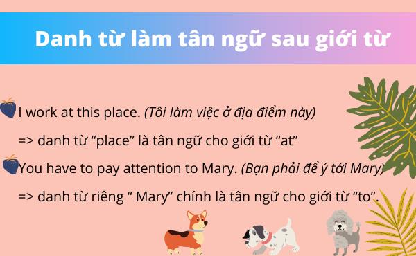 Ví dụ danh từ trong tiếng anh làm tân ngữ sau giới từ