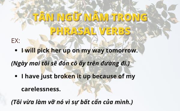 Ví dụ khi tân ngữ nằm giữa Phrasal verbs