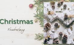 Trọn bộ từ vựng tiếng Anh chủ đề Giáng sinh (Christmas)