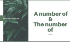 Phân biệt a number of và the number of ở ngữ pháp tiếng Anh