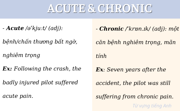 Cặp từ vựng dễ nhầm lẫn Acute và Chronic