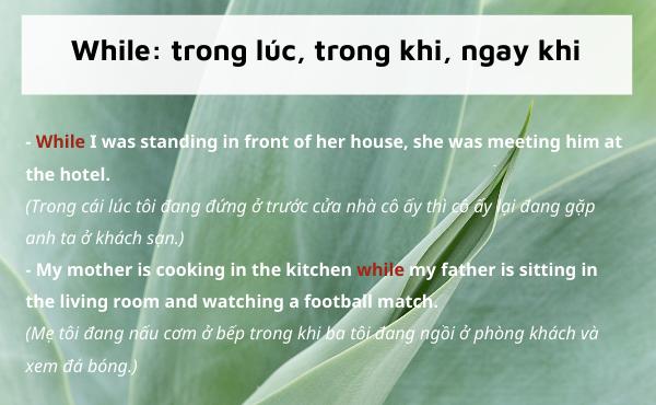 Ví dụ của từ nối while trong tiếng Anh
