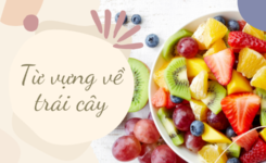 45 từ vựng về trái cây thú vị tiếng Anh nhất định phải biết