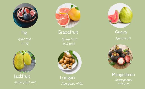 Tên một số loại trái cây bằng tiếng Anh